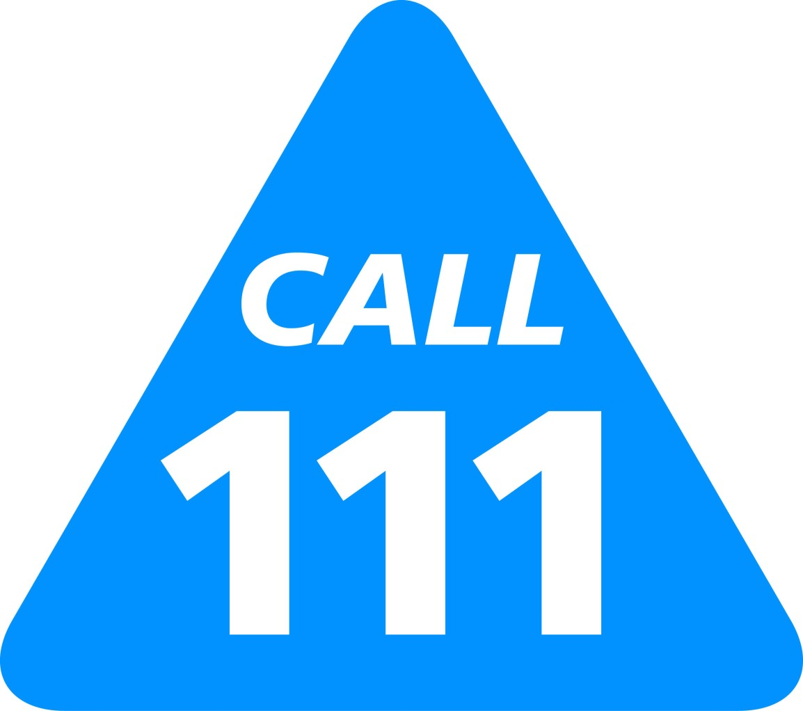 PUBLIC PROVISION OF THE LOCAL NHS 111 / OUT HOURSSERVICE